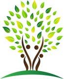 абстрактное фамильное дерев дерево Стоковое Фото