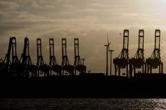 Краны порта Гамбурга Стоковая Фотография