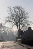冬天村庄街道场面-在冰冷的路的太阳 免版税库存图片