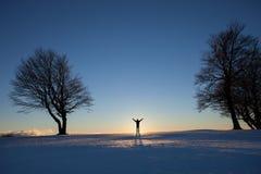 站立在冬天风景的人 库存照片