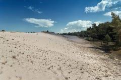 沙丘移动 免版税库存图片