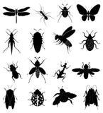 установленные насекомые икон Стоковые Фото