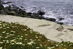 沙子足迹和海 免版税图库摄影