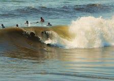 заниматься серфингом Стоковые Фотографии RF
