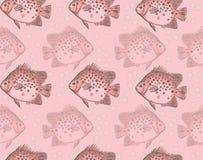 рыбы делают по образцу безшовное Стоковые Фото