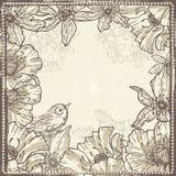 手拉的与鸟的葡萄酒植物的框架 库存照片