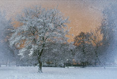 Идти снег снаружи Стоковые Фотографии RF