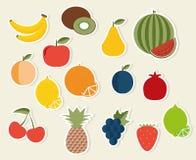 果子象 果子和莓果标志的图象 库存图片