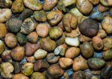 颜色小卵石石头纹理  免版税库存照片