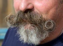 髭 库存照片