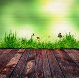 Зеленая кирпичная стена и зеленая трава Стоковое Фото