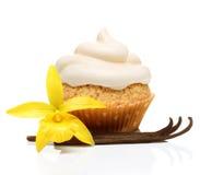 甜点心,杯形蛋糕用香草荚 免版税图库摄影