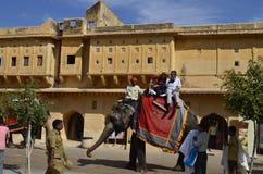 ДЖАЙПУР, ИНДИЯ - туристы на слоне едут в янтарном форте Стоковое фото RF