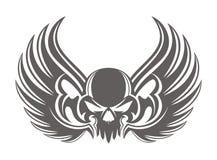 Серый цвет крыла черепа Стоковая Фотография