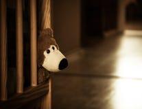 哀伤的孤立玩具熊 免版税库存照片