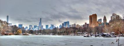 雪的,曼哈顿,纽约中央公园 免版税库存照片