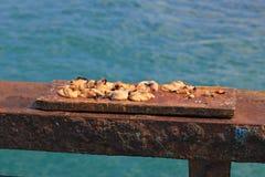 белизна приманки предпосылки изолированная рыболовством Стоковые Изображения