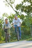 在自行车的资深夫妇在夏天游览 库存图片