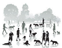 Люди идя с собаками Стоковое Изображение
