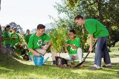 种植一棵树的环境活动家在公园 免版税库存图片