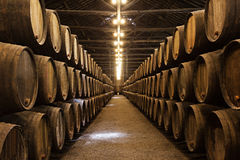 葡萄酒库,波尔图 免版税图库摄影