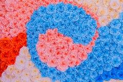 抽象彩虹五颜六色的罗斯花纸背景墙纸 免版税库存图片