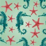 Безшовный вектор морского конька и морских звёзд текстуры Стоковое Фото