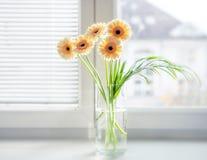 在花瓶的大丁草花束在窗台与明亮的白天 免版税库存图片