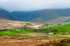 农田在爱尔兰 图库摄影