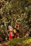 哈妮妇女 免版税图库摄影