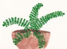 蕨原始的儿童绘画在花盆的 库存图片