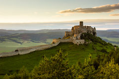 斯皮城堡,小山顶的斯洛伐克 库存图片