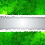 Зеленая триангулярная полигональная сорванная бумага Стоковое Изображение