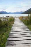 向木的湖主导的路径 免版税图库摄影