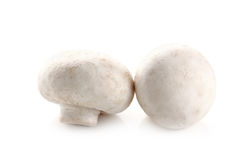在白色背景隔绝的蘑菇蘑菇 免版税库存图片