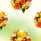 白色,橙色,红色和黄色玫瑰开花,半花束,植物布置,绿色染黄背景,被隔绝 库存图片