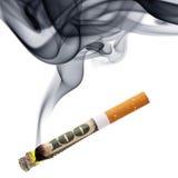 抽烟的金钱 免版税库存图片