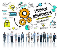 人力资源就业工作公司配合的事务 库存照片