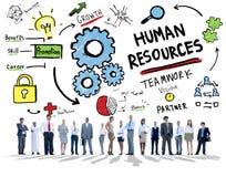 人力资源就业配合公司业务人 库存照片