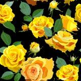 与黄色玫瑰的无缝的花卉背景 库存图片
