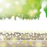 复活节白色草兔子木头 库存照片