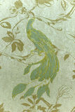 与美妙的鸟的墙纸, 库存图片