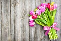 在老木背景的春天郁金香 免版税库存照片