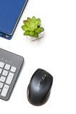 计算机老鼠、键盘、议程和植物白色背景的 库存照片