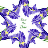 紫色虹膜花水彩花卉框架  免版税图库摄影