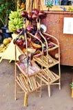 Красочное положение Мауи Гавайских островов сельского рынка Стоковые Изображения