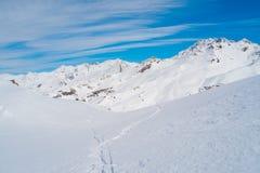 阿尔卑斯山在冬天 免版税库存照片