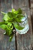 Газированное питье с мятой Стоковое Фото