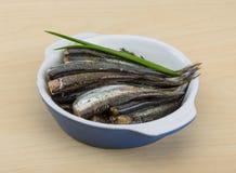 盐味的鲥鱼 库存图片