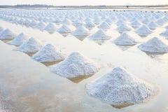 海盐堆在原始的盐产物农场由自然做 库存照片